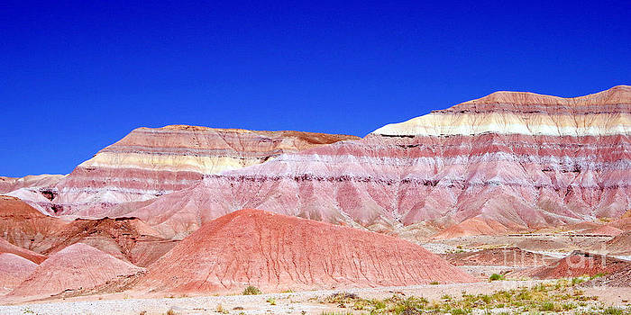 Douglas Taylor - CHINLE - THE COLORS OF THE PAINTED DESERT
