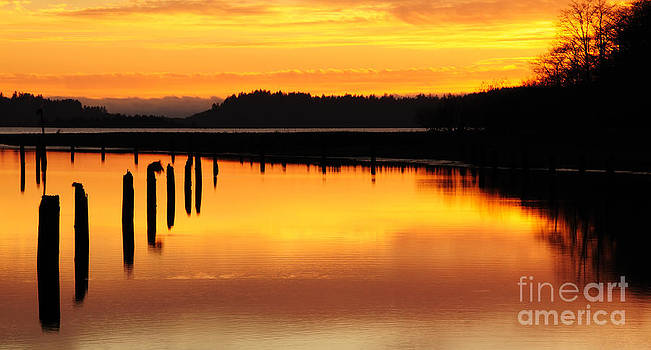 Vivian Christopher - Chinook River Washington 2