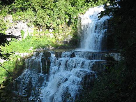 Chittenango Falls 3 by Joanna Baker - Jenkins