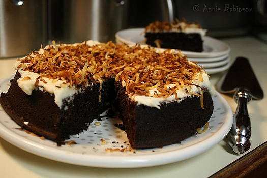 Chocolate And Coconut Milk Cake by Annie Babineau