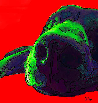 Chocolate Lab in Technicolor by Maideline  Sanchez
