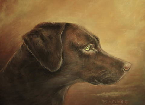 Patricia Schneider Mitchell - Chocolate Lab