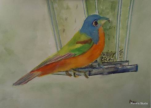 Chris' Birdfeeder by Betty Pimm