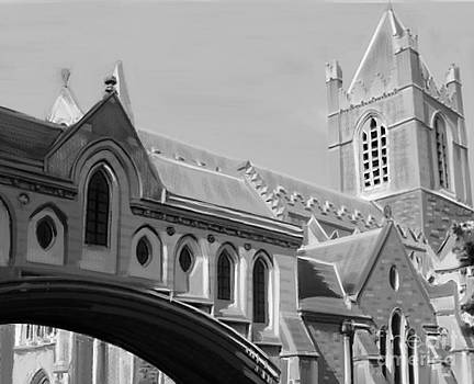 Christchurch Cathedral by Francis Leavey