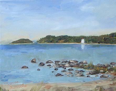 Christian Island by Monica Ironside