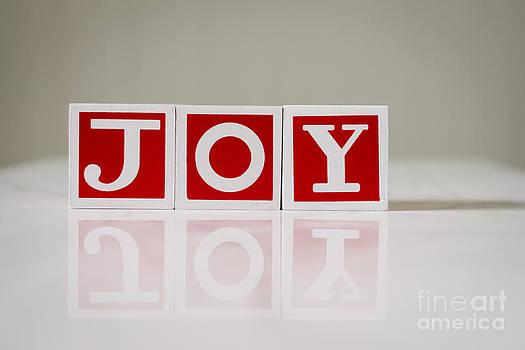 Christmas Blocks Joy by Gillian Vann