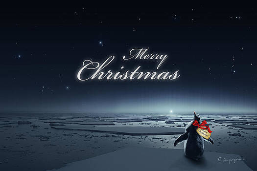 Cassiopeia Art - Christmas Card - Penguin black