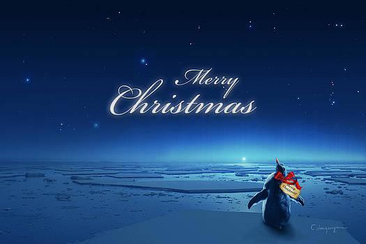 Cassiopeia Art - Christmas Card - Penguin blue