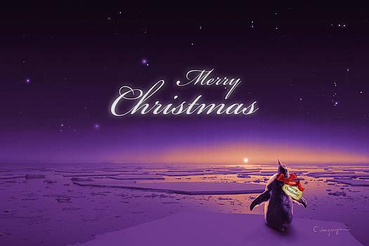 Cassiopeia Art - Christmas Card - Penguin purple