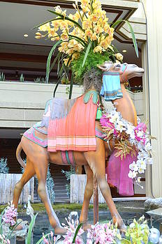 Mary Deal - Christmas Carousel Camel with Orchids