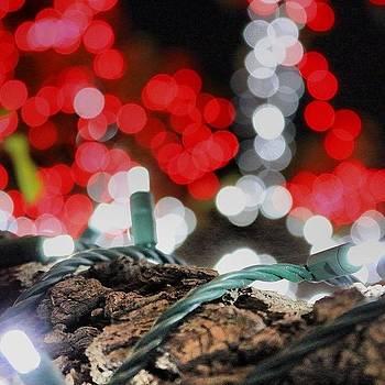 #christmas #christmaslights #lights by Mark Jackson