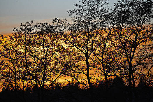 Ronda Broatch - Christmas Eve Sunset