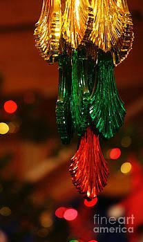 Linda Shafer - Christmas Holiday Party 3