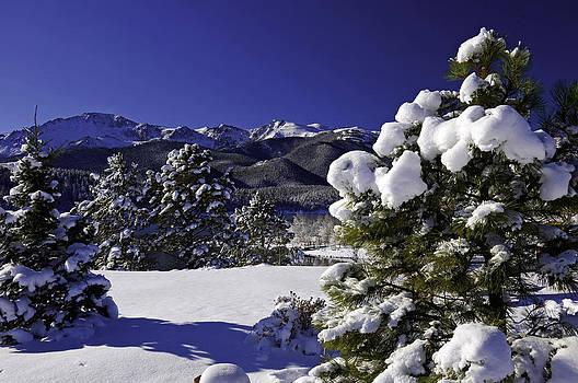 Christmas in Colorado by John Hoffman