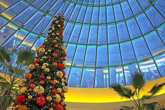 Christmas in shopping mall by Borislav Marinic