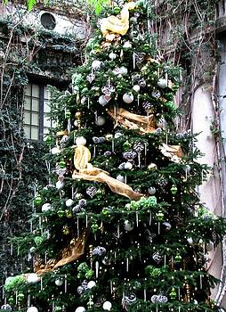 Angela Davies - Christmas In The Conservatory At Longwood Gardens