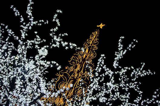 Christmas Lights In Fuengirola by Austin Brown