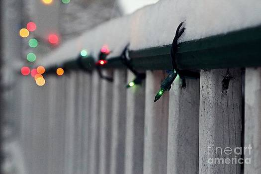 Christmas Lights by Patrick Rodio
