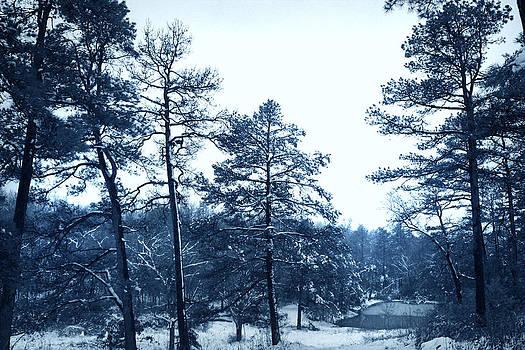 Nina Fosdick - Christmas Snowfall