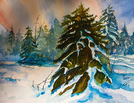 Christmas Tree Forest by Lee Stockwell