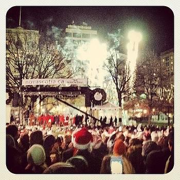 #christmas #tree #lighting #boston by Hugo Lemes