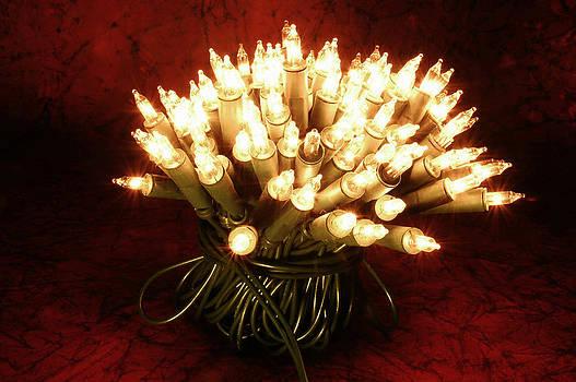 Christmas tree lights by Carol Vanselow