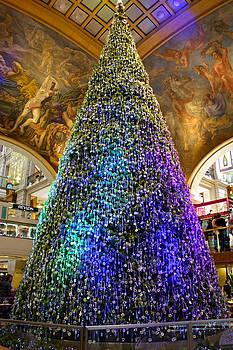 Venetia Featherstone-Witty - Christmas Tree