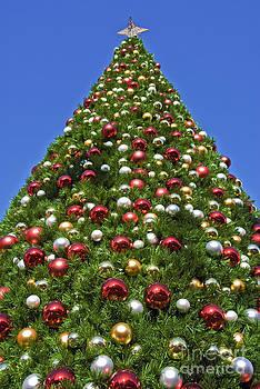 David Zanzinger - Christmas Tree with Decorations
