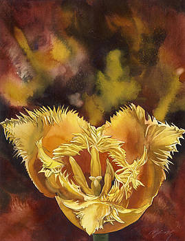 Alfred Ng - Christmas tulip