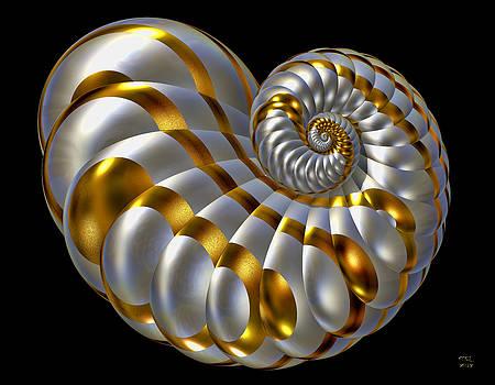 Manny Lorenzo - Chrysalis Shell