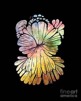 Barbara Griffin - Chrysanthemum Stone W C 1