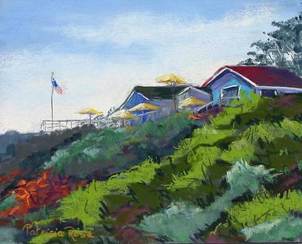Chrystal Cove Vista by Patricia Rose Ford