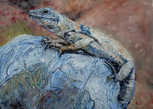 Chuckwalla  by Sandra Lytch