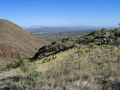 Steven Ralser - Chupederas - Bosque - New Mexico