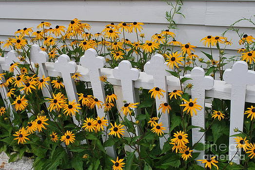 Church Fence by Tracey Hampton