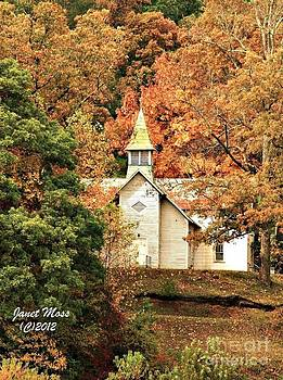 Church in the Wildwoods by Janet Moss