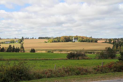 Church on a Farm by Thomas Rehkamp