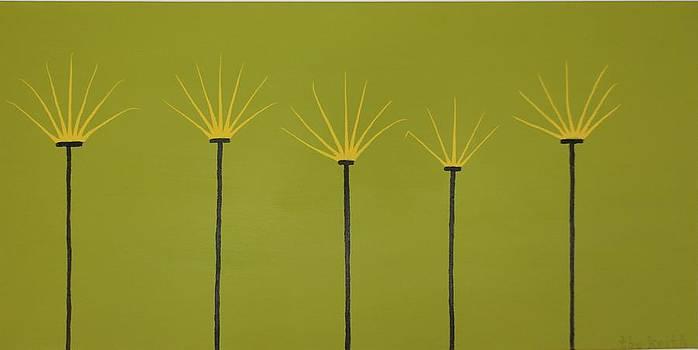 Cinco Amarillos by Keith Newton