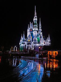 Cinderella's Castle by Michael Petrizzo
