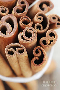 Cinnamon sticks by Jelena Vasjunina