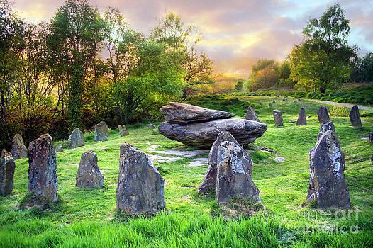 Circle Stones by Catherine Perkinton