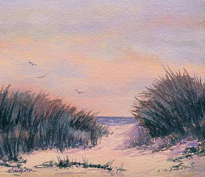 Circling at Sunset by Vikki Bouffard