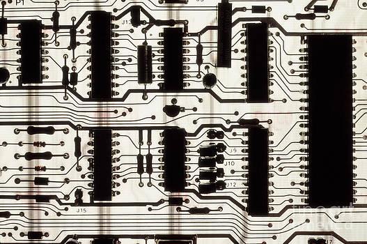 Phillip Hayson - Circuit Board
