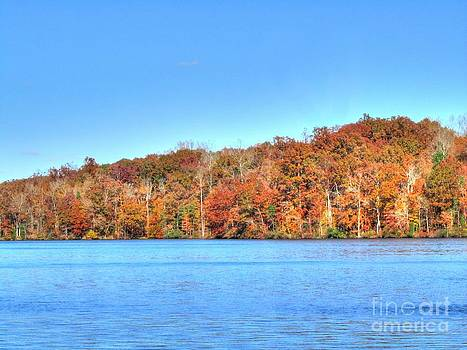 Jaclyn Hughes Fine Art - City Lake Autumn