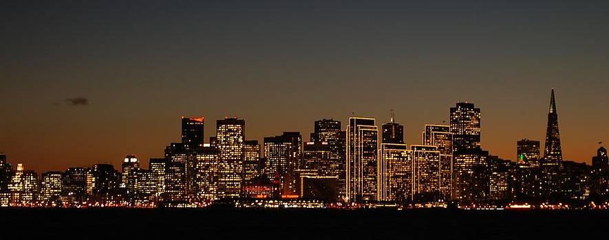 City Lights by Lawrence Pratt