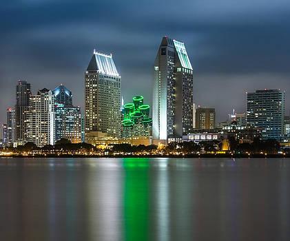 Larry Marshall - City of San Diego Skyline 1
