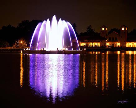 City Park Fountain After Dark by Stephen  Johnson