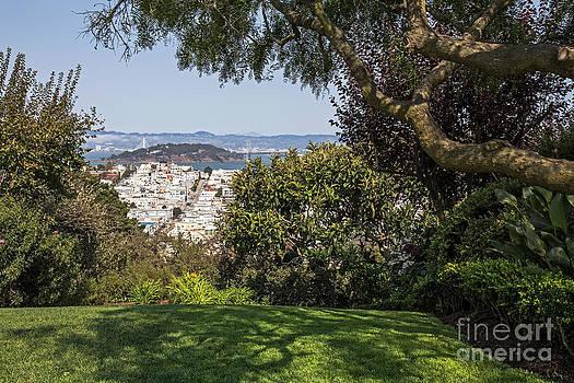 Kate Brown - City View