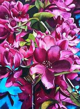 Clad in Pink  by Shagufta Mehdi