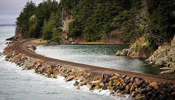 Clarks Point Train track by Blanca Braun